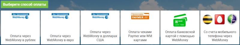 Способы оплаты домена