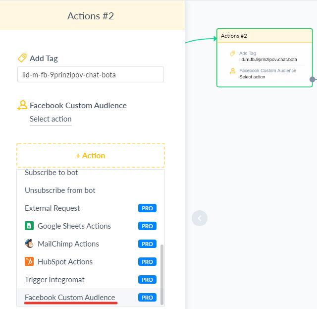 Через функцию Actions включаем выгрузку пользователей в аудитории